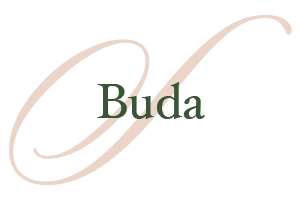 Buda-Homes-for-Sale
