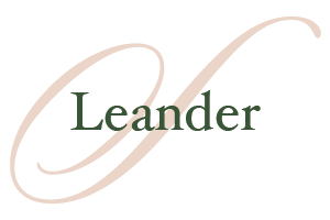 Leander-Homes-for-Sale