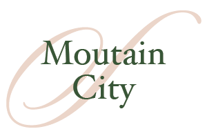 Mountain-City-homes-for-Sale